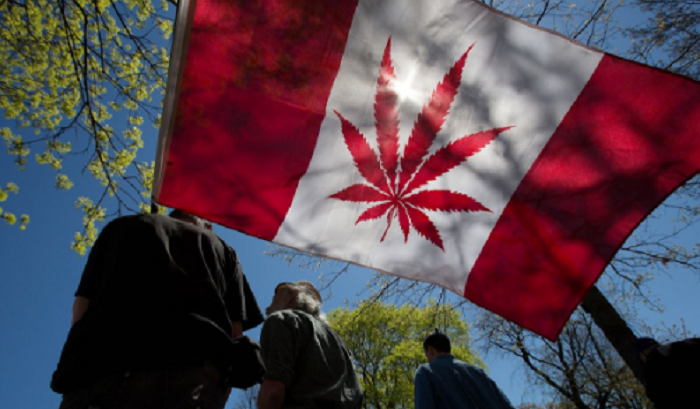 Canada legalizza marijuana