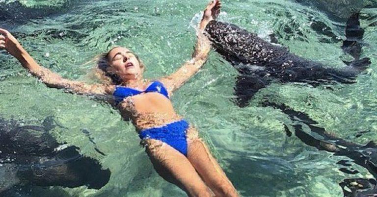 Cerca lo scatto perfetto, viene morsa da uno squalo