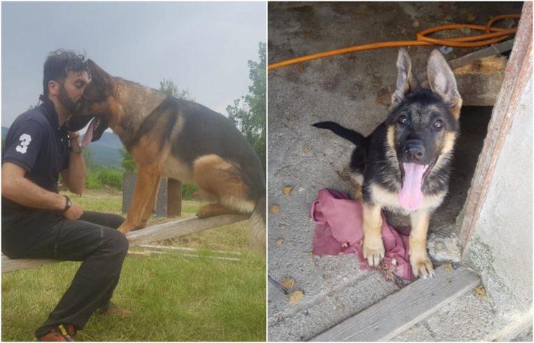 Kora, la figlia del cane-eroe Kaos