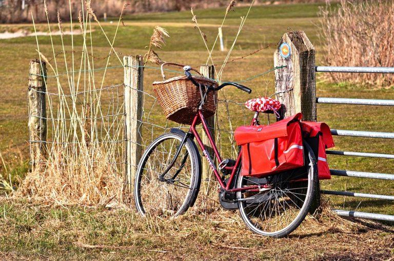 borsetta bici