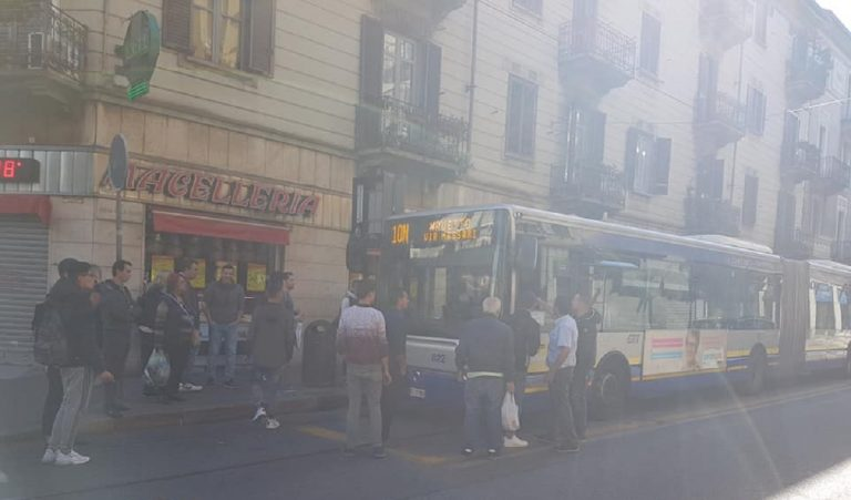 Torino lite linea 10N01 768x451