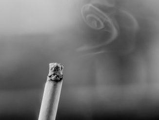 Verme sigaretta Torino