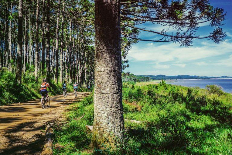 ecoturismo bicicorallo 2 768x512