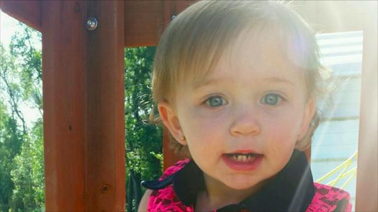 Bambina 1 anno morta aggredita da pitbull