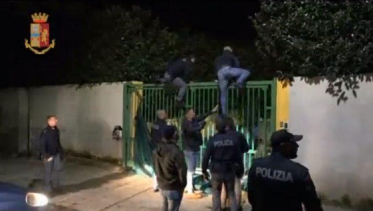 Calabria arresti droga combattimento cani 768x435