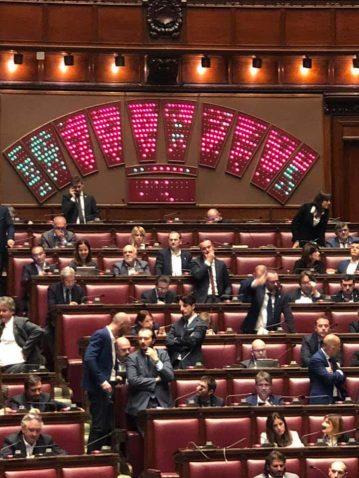 decreto genova pd fratelli d'italia risultati