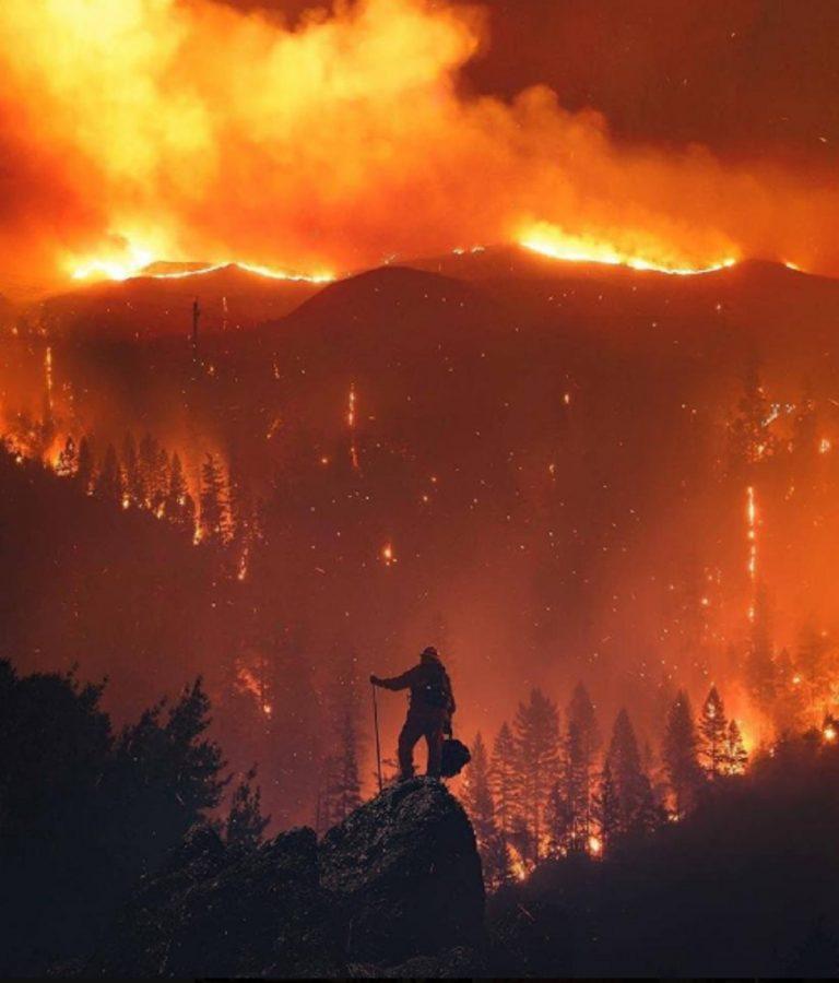 incendi california camp fire 768x900