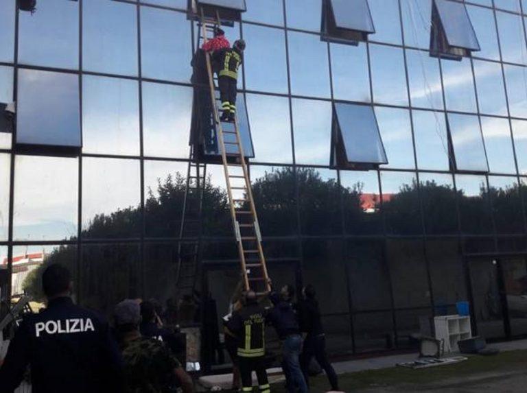 incendio roma hotel occupato