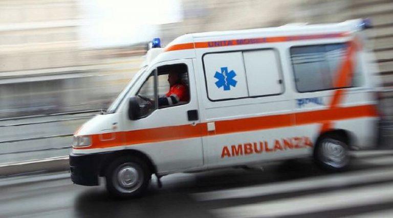 Aggredita da un pitbull, in ospedale una ragazza di 18 anni