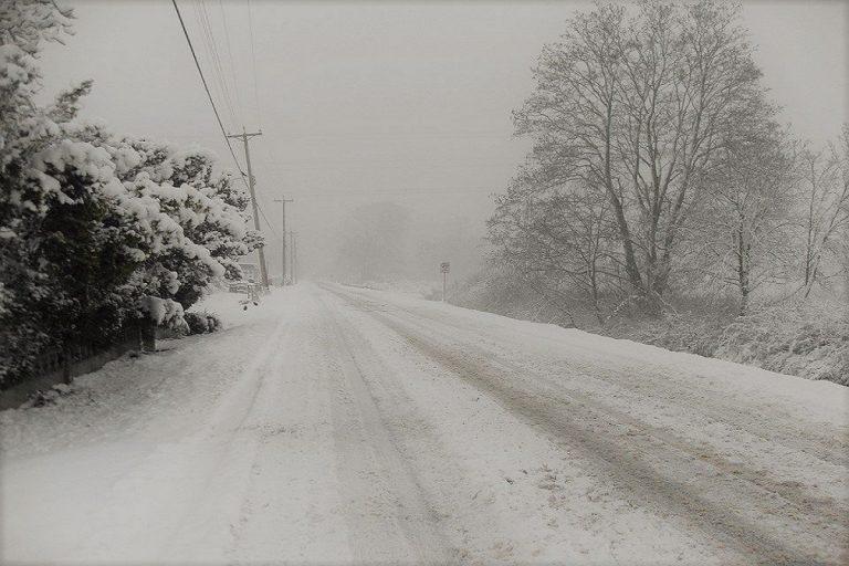 Neve al centro-sud, scuole chiuse