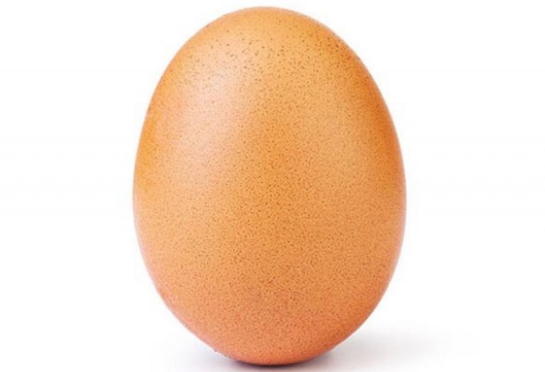 record egg 768x525