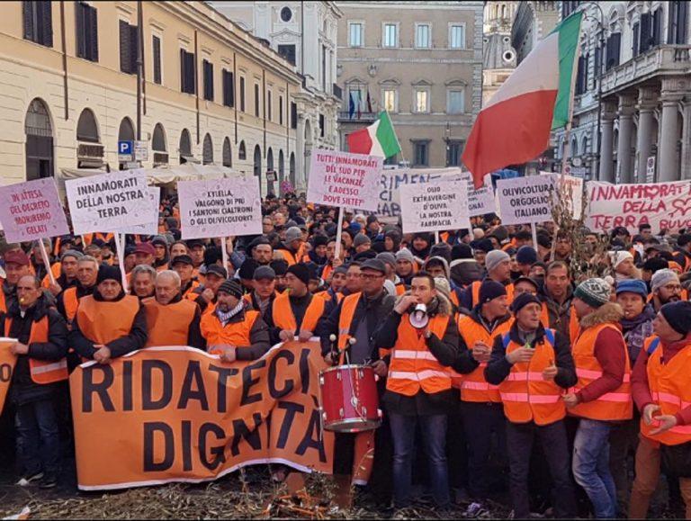 Risultati immagini per Piazza Santi Apostoli invasa dai gilet arancioni: protestano gli olivicoltori