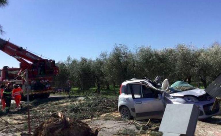 Guidonia, albero abbattuto su auto, un morto