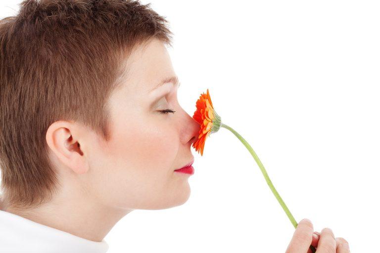 Il correttore nasale funziona? Le opinioni e gli utilizzi