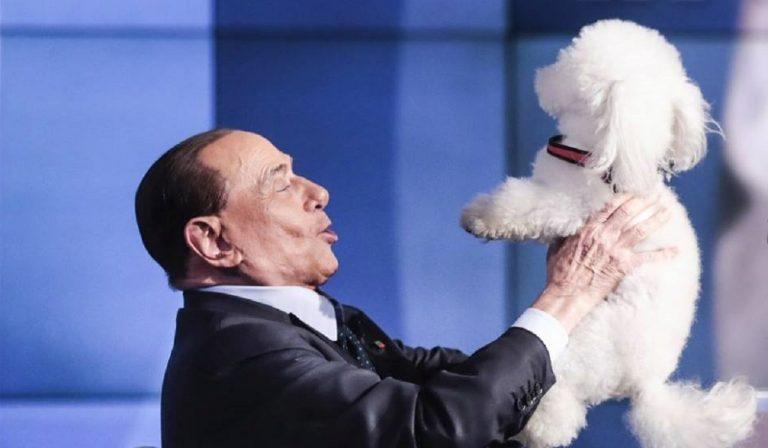 """Berlusconi, la nuova vita: """"Vivo e dormo con 9 cani"""""""