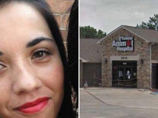 Texas, sbranata dai suoi due pitbull: morta mamma 33enne
