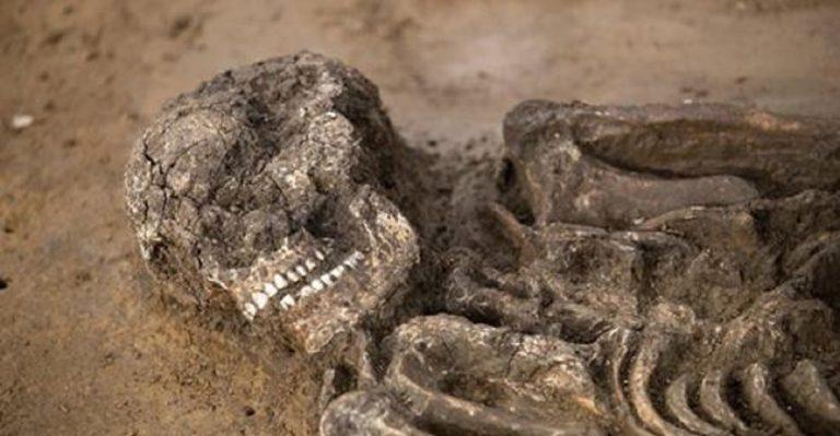 Germania, trovato scheletro di un uomo di 6500 anni fa: si chiama Fred