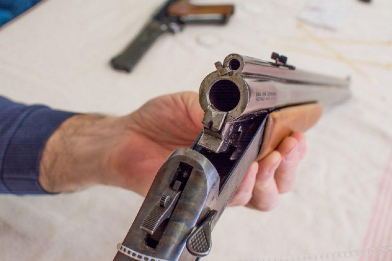 fucile 768x512