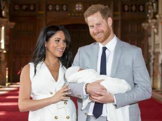 Royal baby scimmia, conduttore licenziato