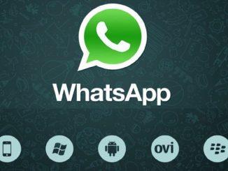 grassetto whatsapp