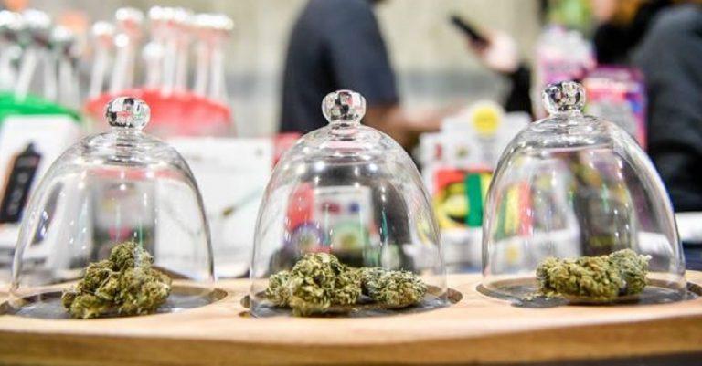 chiusura negozi cannabis class action