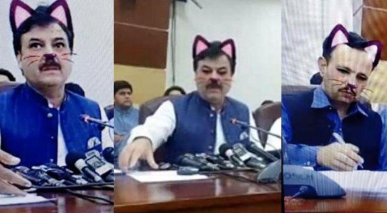ministro gatto