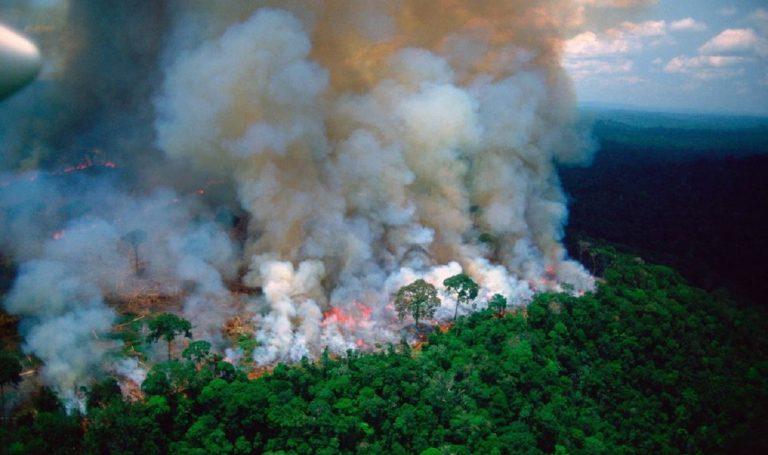 amazzonia in fiamme ossigeno