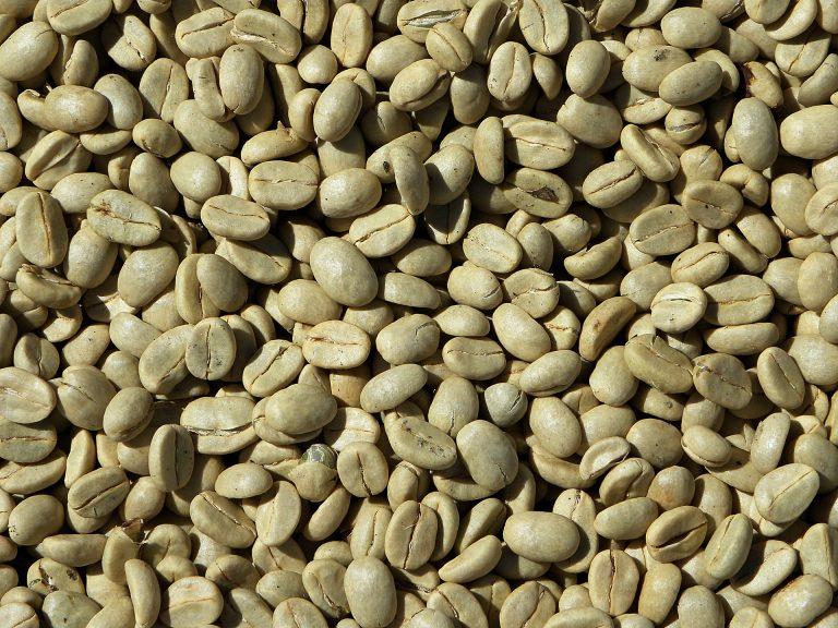 effetti collaterali dell estratto di caffè verde in grani per la perdita di peso