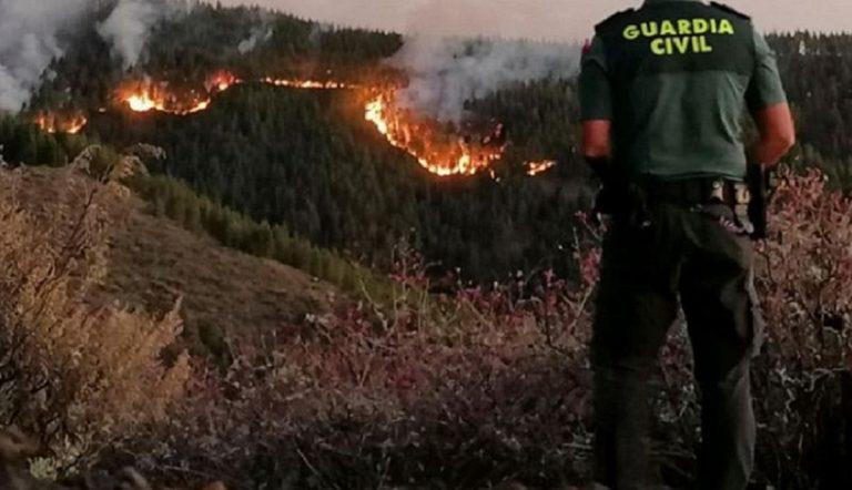Risultati immagini per gran canaria incendio
