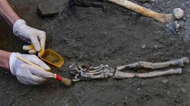parma trovati resti umani