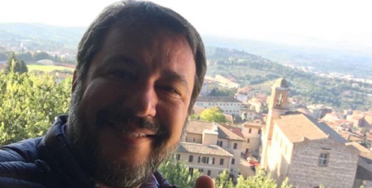 finto tweet Salvini