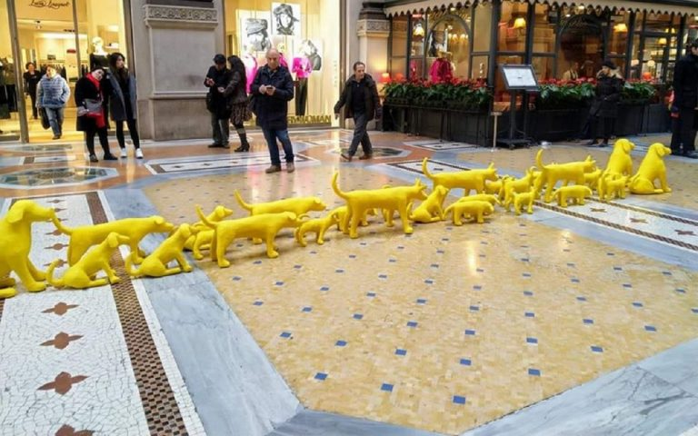cani gialli galleria milano