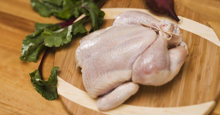 pollo paralizzato 768x403