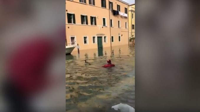 venezia video acqua alta