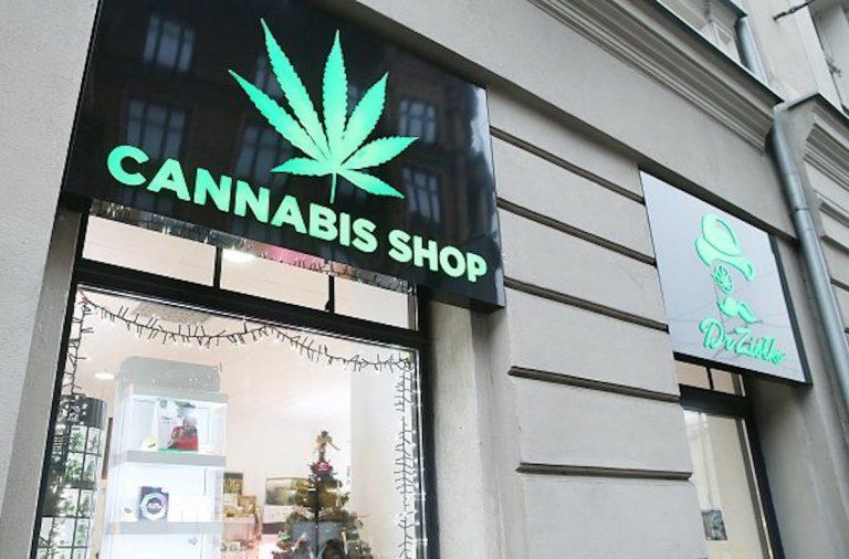 cannabis light Salvini