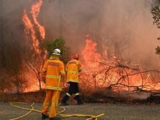 incendi australia 1