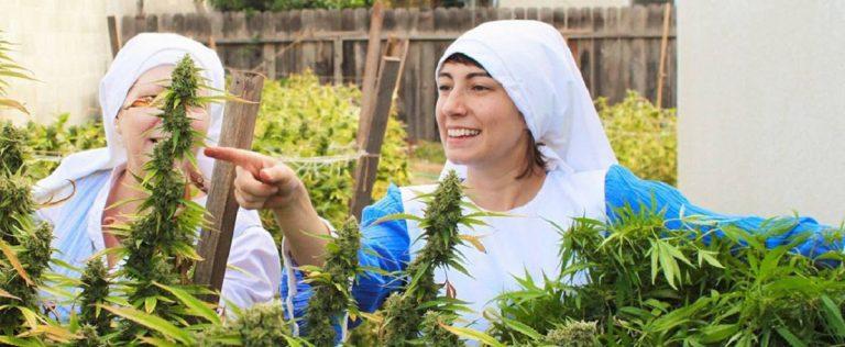 Sorelle Marijuana