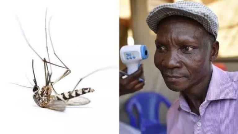 Uganda, l`uomo che uccide le zanzare con i suoi gas intestinali