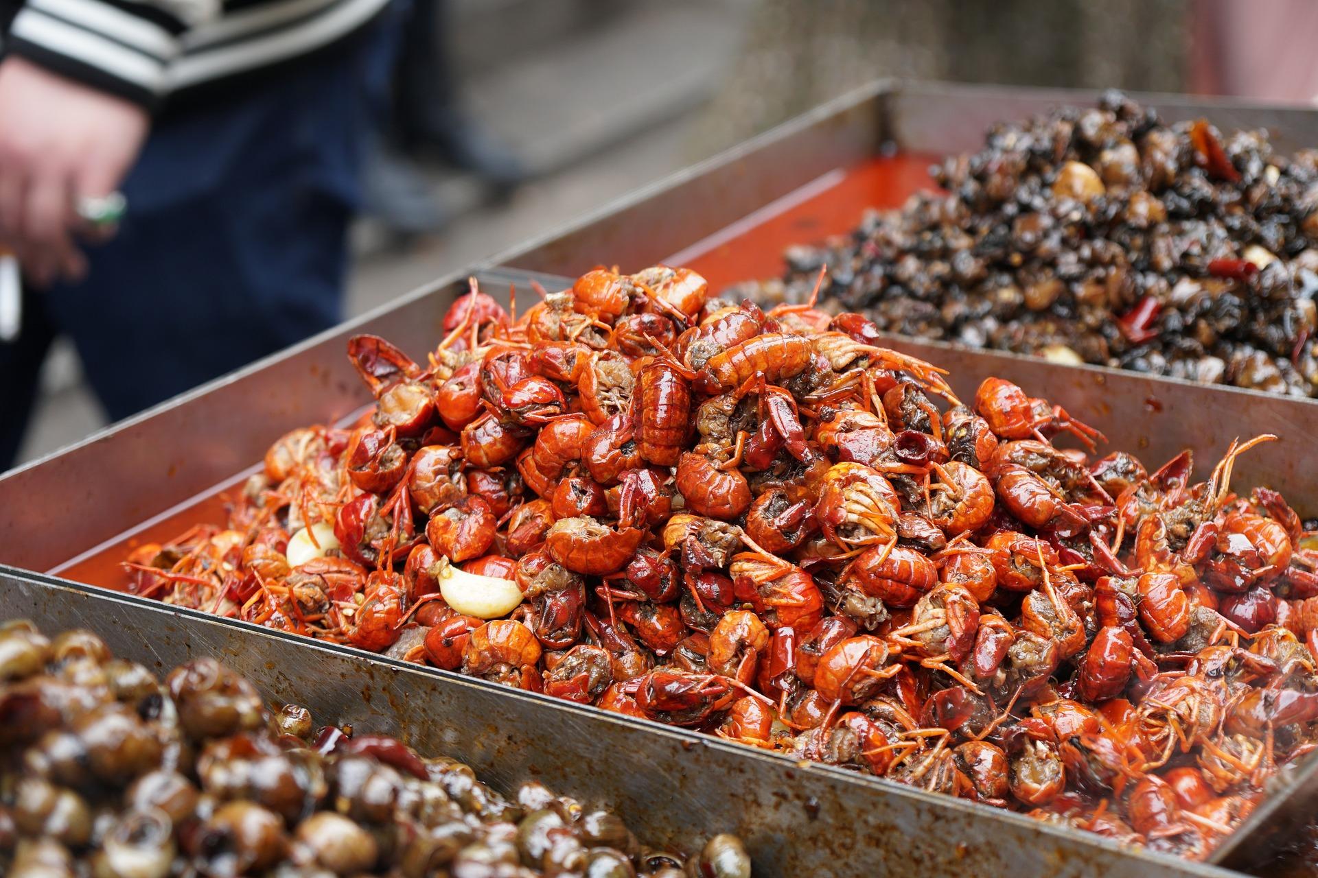 Mercato del pesce di Wuhan