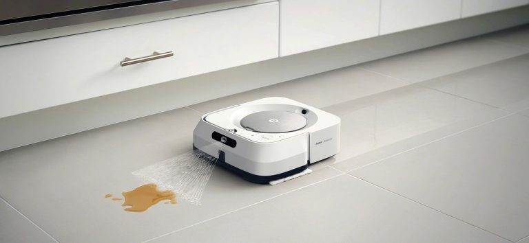 Robot domestici.