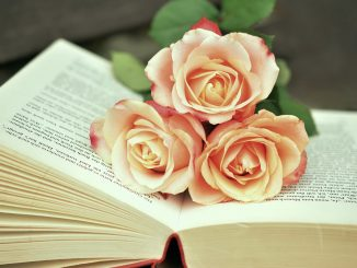 book san valentino