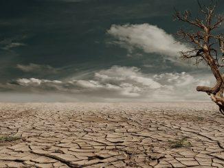 Cambiamento climatico 2050