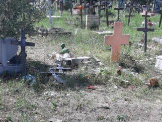 vedova rapinata cimitero