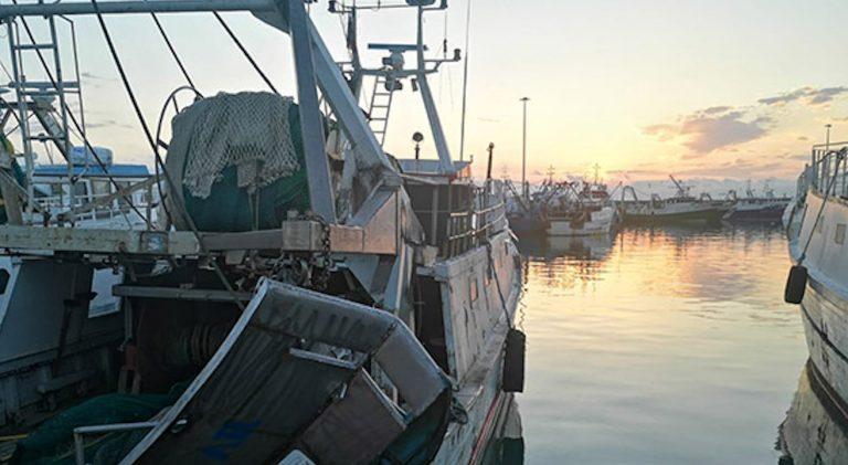 coronavirus, i danni su pesca e agricoltura