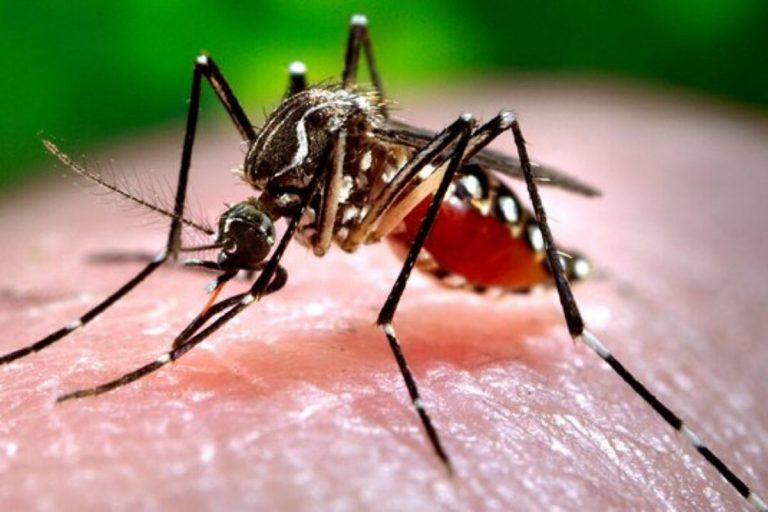 coronavirus rischio