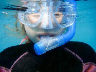 snorkelling 1488316 1280