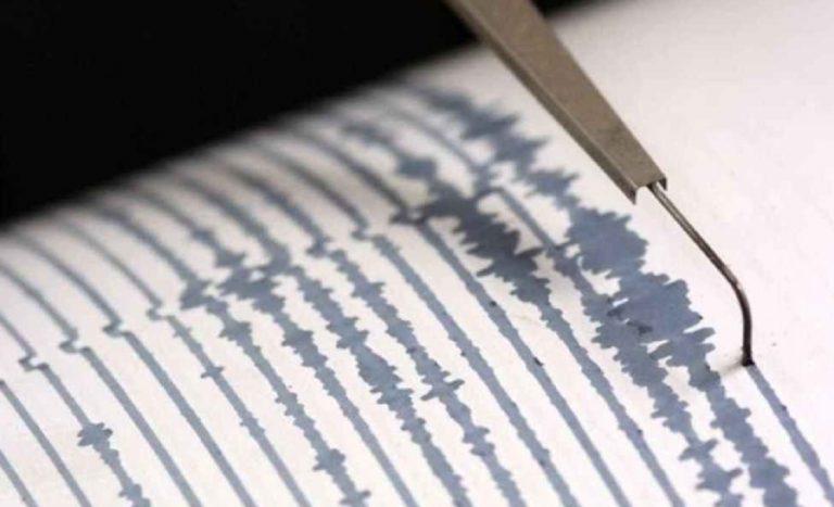 terremoto avellino