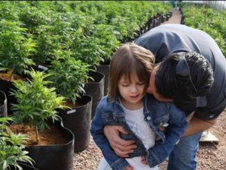 Chi è Charlotte, bimba che ha cambiato il volto della cannabis medica