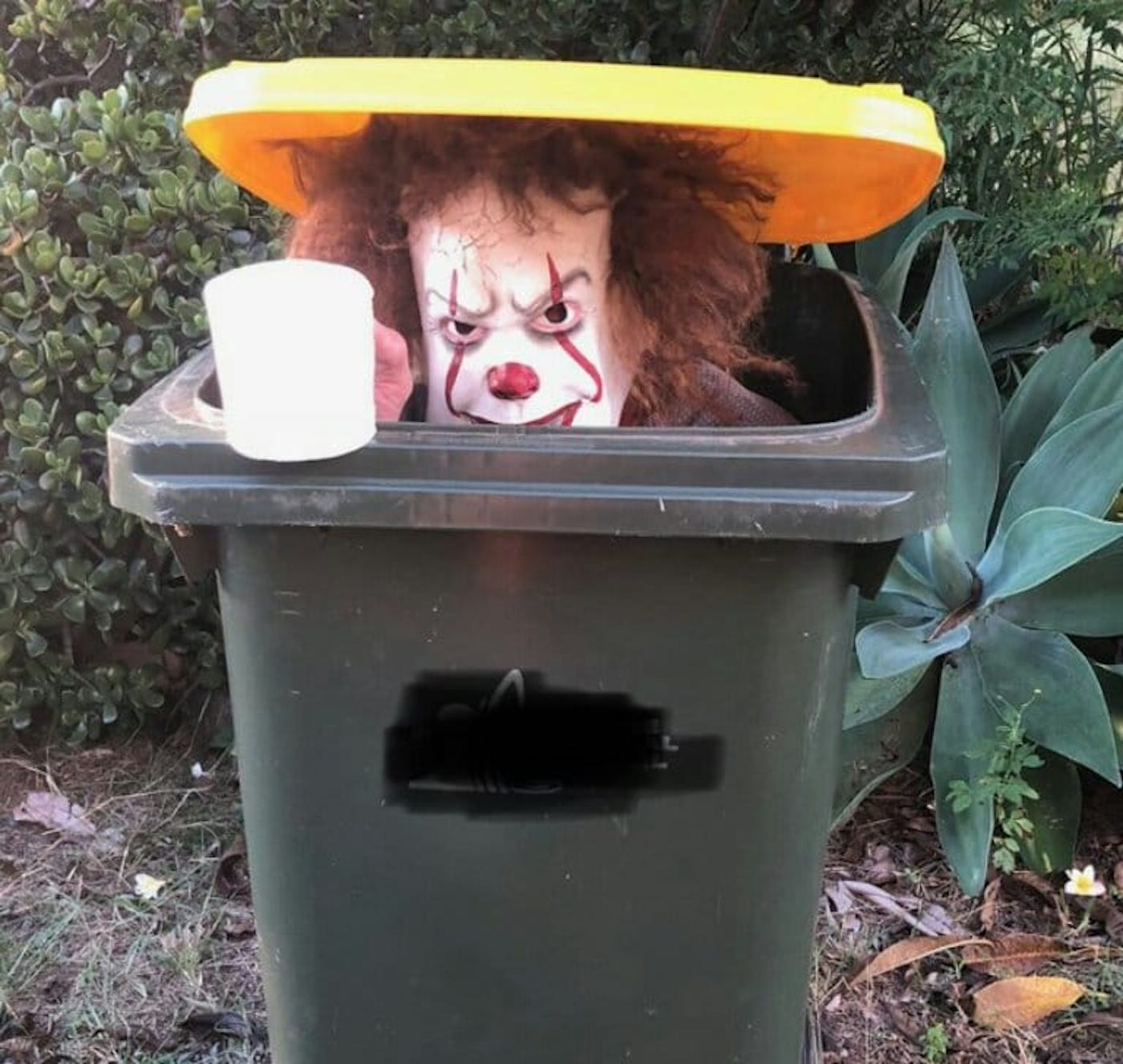 confinement australie sortie poubelles carnaval 13