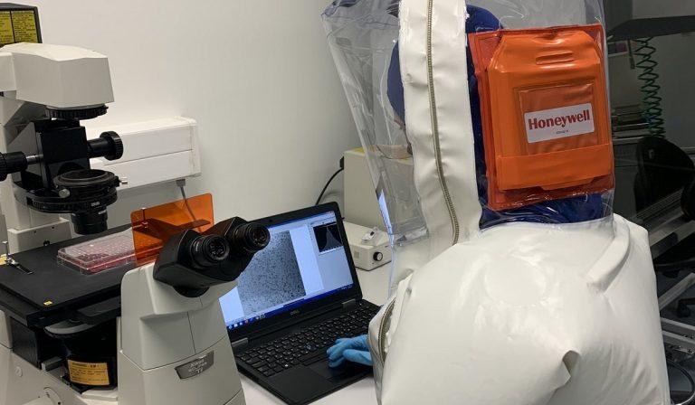 Coronavirus, la Cina scopre il motore della pandemia